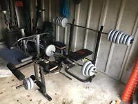 Multi gym weight bench gym equipment