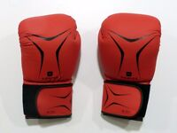 Brand New Boxing Gloves