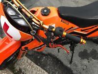 Pulse adrenaline 125 for sale