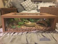 Exo Terra Glass and Wood Vivarium for Reptiles