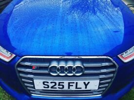 Private Number Plate **S25 FLY**