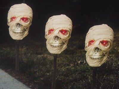 Halloween Talking Skeleton Head (HALLOWEEN TALKING LIGHTED SKELETON MUMMY SKULL BLOW MOLD & SOUND HEAD PROP)