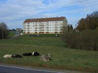 neu sanierte Einraumwohnung Sachsen - Claußnitz Vorschau