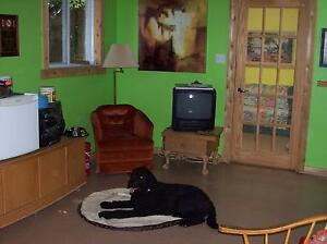 D's Country Pet Resort    A hotel for dogs and cats Cornwall Ontario image 1
