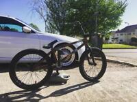 CUSTOM BMX! £250