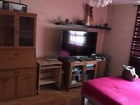 Large double room available in south wimbledon