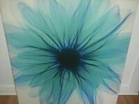 Teal rug pict