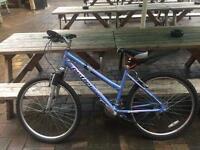 Small female bike