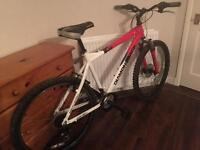 Daimonback GT mountain bike