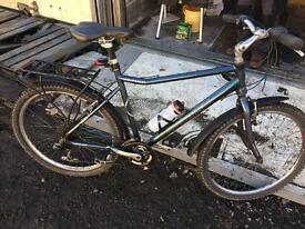 """Raleigh voyager 21"""""""