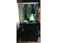 Aqua One reef 275 Tall Tropical Tank perfect condition without fish