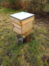 National beehive. Cedar. Complete. Brood box + 2 supers and 16 frames