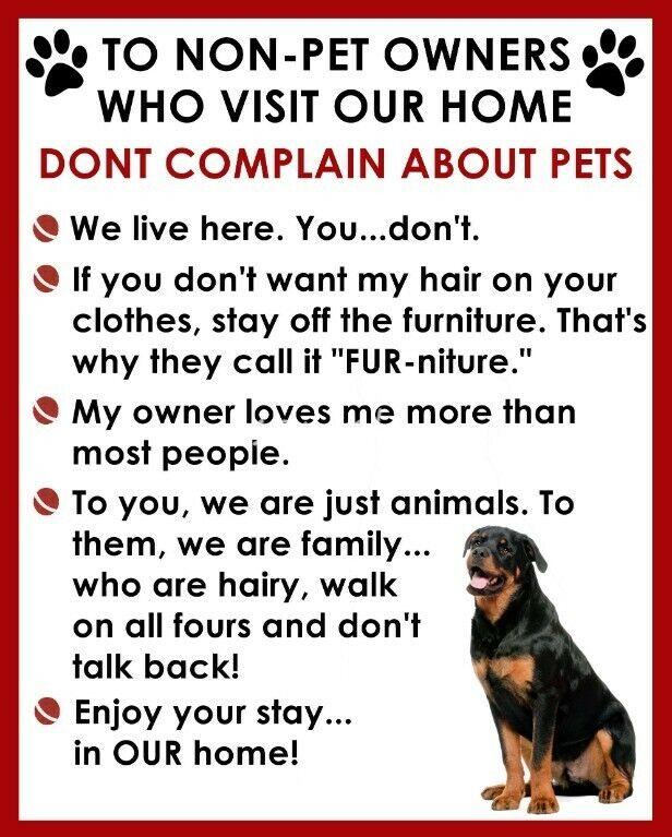 ROTTWEILER Non Pet Owner Magnet
