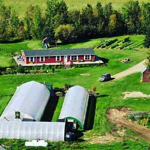 Farm, House, Greenhouses, U-Pick, Corrals, Hunting & Recreation