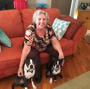 Pet sitting in your home