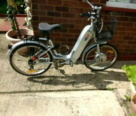 Adult Electric bike