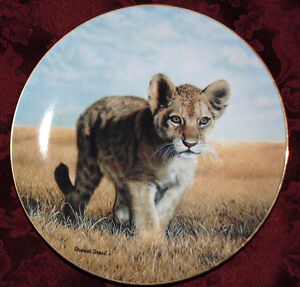 Baby Wild Lion CAT Young Explorer Hamilton Collector PLATE P33