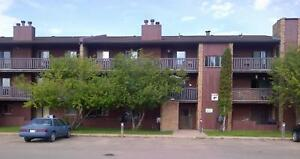 FALL SPECIAL! 1 Bedroom From $675 - Newly Renovated Glenwood...