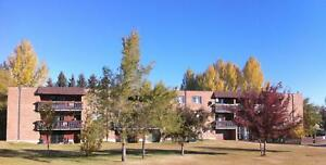 FALL SPECIAL! 1 Bedroom From $625 - Newly Renovated...