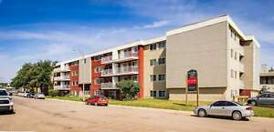 MacDonald Place - Bachelor Apartment for Rent