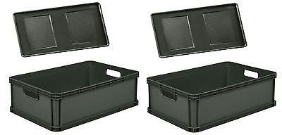 2 x Robusto-Box mit Deckel 45 L graphite Aufbewahrungsbox Box Kiste