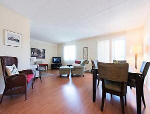 Grand appartement 2 chambres au Plateau à louer : Gatineau, QC