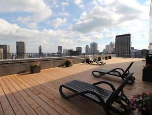 (3 1/2 Penthouse) Recent renovation, great views