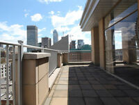 Gorgeous downtown penthouse, 1000 sqft terrace, 360° views
