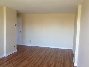 Bright & Spacious St Laurent 1 Bedroom (3 1/2) Apartment for Ren