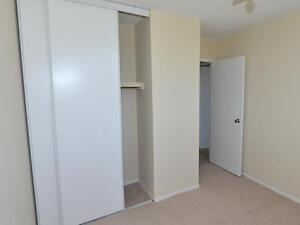 Beautifully Designed 2 Bedroom Suites. One Month Free Kitchener / Waterloo Kitchener Area image 6