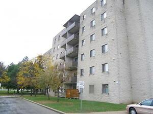 2 Bedroom Spacious Suites Surrounded by Beautiful Parks! Kitchener / Waterloo Kitchener Area image 1