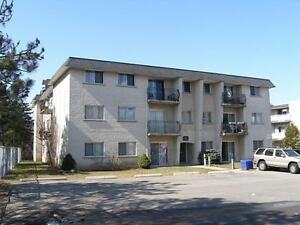 Free month on Conveniently Located 2 Bedroom Suites! Kitchener / Waterloo Kitchener Area image 1