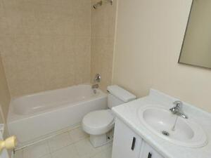 Modern and Exquisite Suites Available for Rent Kitchener / Waterloo Kitchener Area image 4