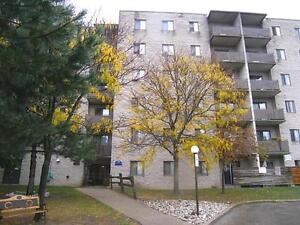 2 Bedroom Spacious Suites Surrounded by Beautiful Parks! Kitchener / Waterloo Kitchener Area image 2
