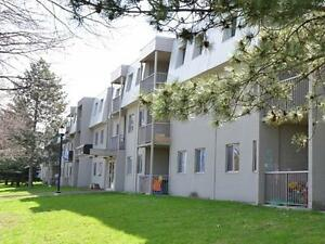 Beautifully Designed 3 Bedroom Suites. Kitchener / Waterloo Kitchener Area image 2