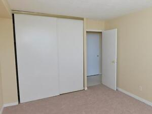 Modern Suites Available for Rent Kitchener / Waterloo Kitchener Area image 6