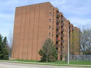 Modern Suites Available for Rent Kitchener / Waterloo Kitchener Area image 2