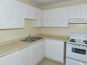 Beautifully Designed 3 Bedroom Suites. Kitchener / Waterloo Kitchener Area image 3