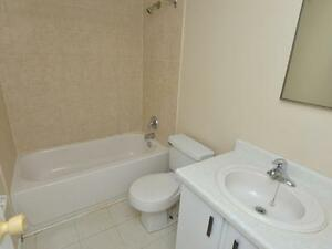 Modern Suites Available for Rent Kitchener / Waterloo Kitchener Area image 4