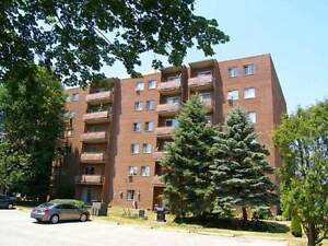 5 Lamers Court - One Bedroom Apartment Apartment for Rent