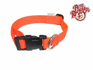 PETE-RICKARD-NEW-1-ADJUSTABLE-NYLON-ORANGE-PUPPY-COLLAR-DD696-BIRD-DOG