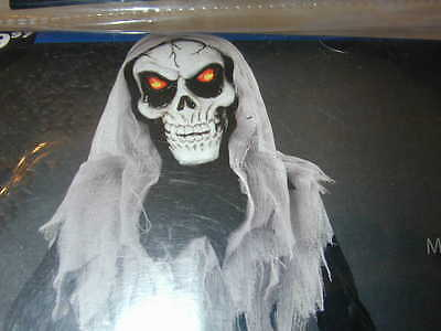 HALLOWEEN COSTUME Skull Reaper Light Up Scary Eye Boy S Robe Mask Cheesecloth NU