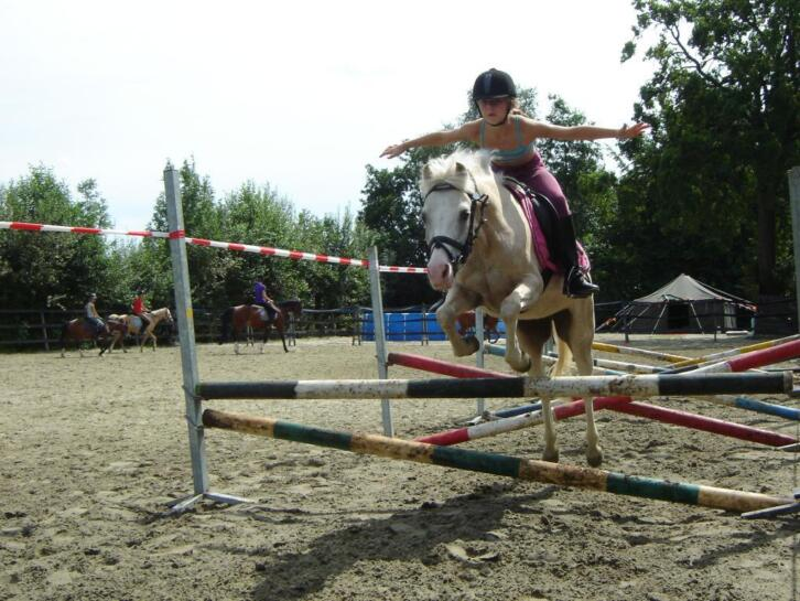 Paardensportcentrum de Steegh Berghem