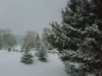 Christmas at Horseshoe Valley