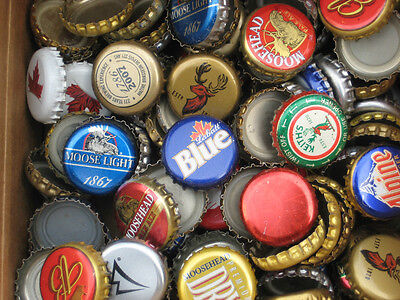 100 beer bottle caps  ( No Dents)  Free S&H