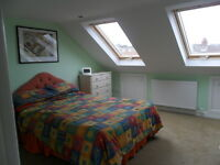 Spacious loft room with ensuite in Heavitree