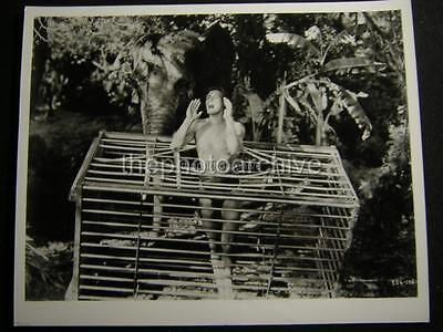 JOHNNY WEISMULLER TARZAN MOVIE PHOTO W699
