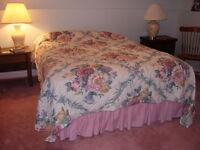 1 bedroom basement suite in Dartmouth