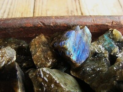 2000 Carat Lot of Unsearched Natural Labradorite Rough + a FREE faceted gemstone