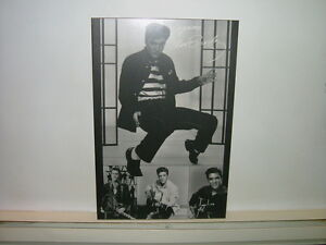 ELVIS PRESLEY  PHOTO POSTER   LAMINE  EN PARFAITE CONDITION